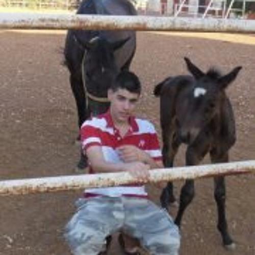 Omar Daboubi's avatar