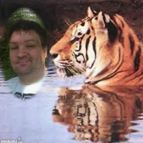 fajahtiestofan's avatar