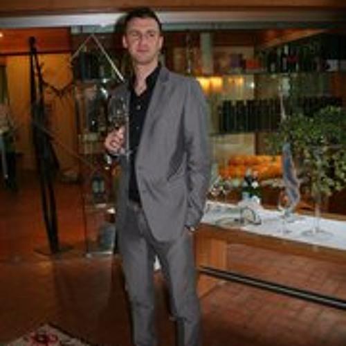 David Čižmešija's avatar