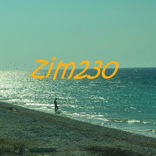Zim230's avatar