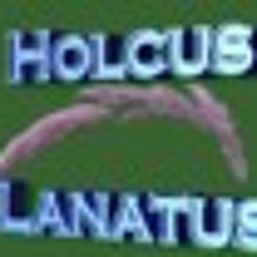 Holcus Lanatus's avatar