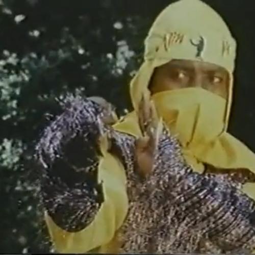 Ninja-Brain's avatar