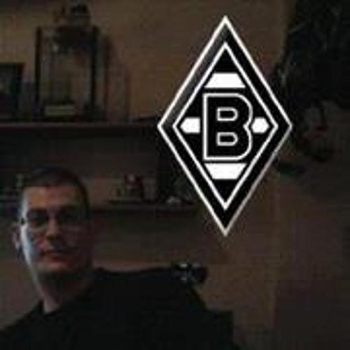 Sascha Erwin Schmitz's avatar