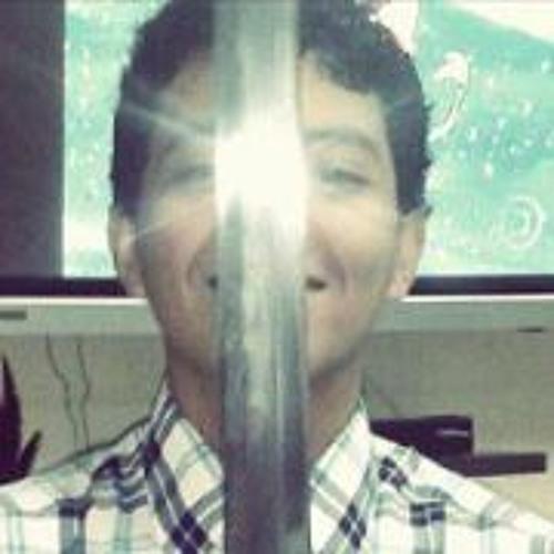 Paulo Henriques Souza's avatar
