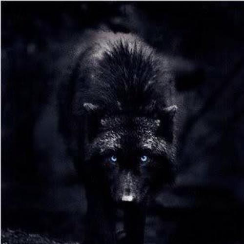 DarkLink61's avatar