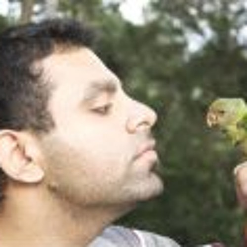 Vijyesh Narula's avatar