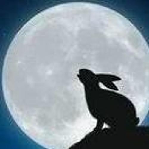 aether_bunny's avatar