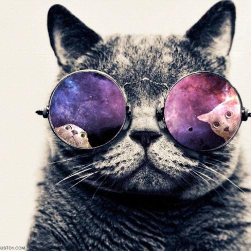 Cara_Kitty's avatar