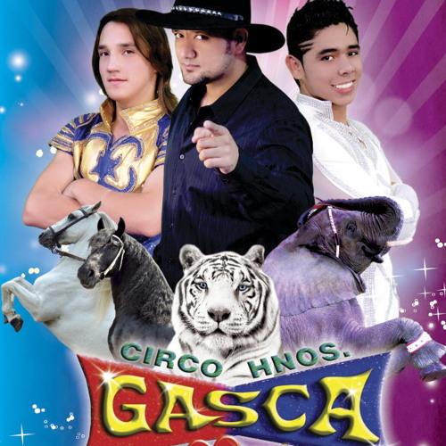 Raulgasca's avatar