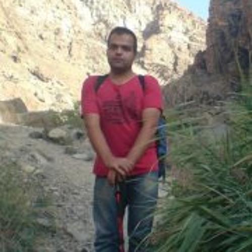Majid Amir Atashany's avatar