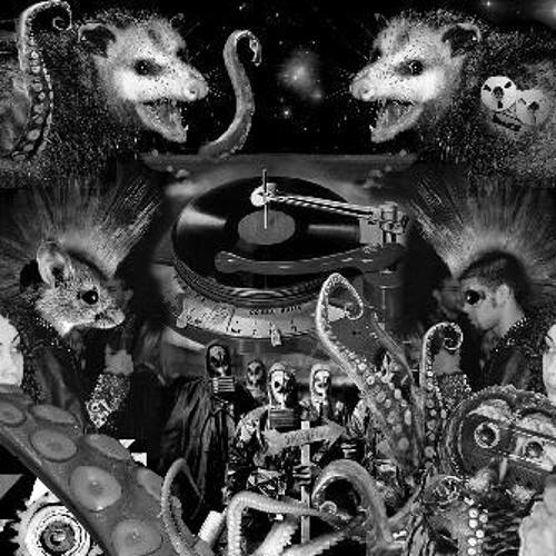 OCTOPOSSUM's avatar
