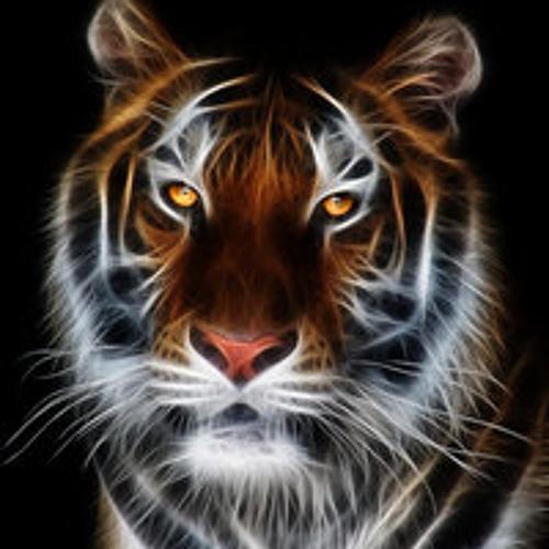 Volkan Darende's avatar