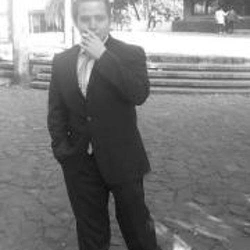 Luis Palma 8's avatar