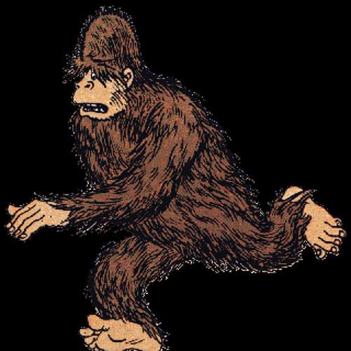 Big Foot Meltdown's avatar
