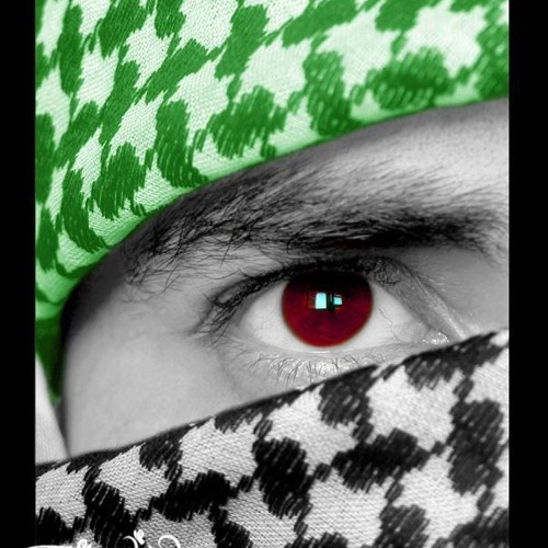 Yasser Kassem's avatar