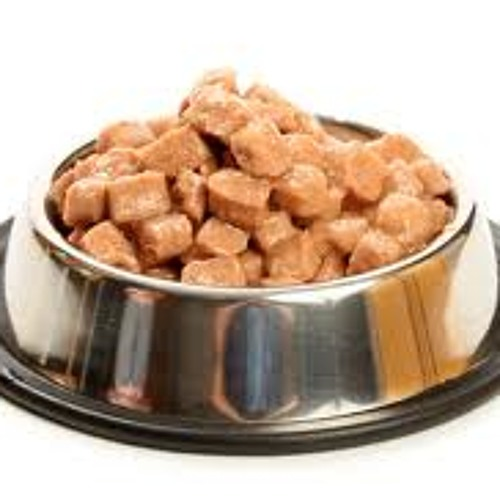 Hot Cat Food's avatar