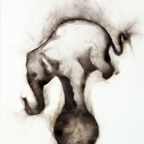 Elephant dub's avatar