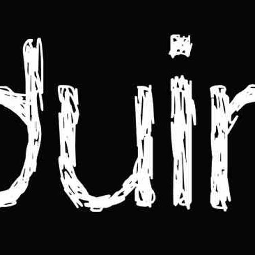 DUIN's avatar