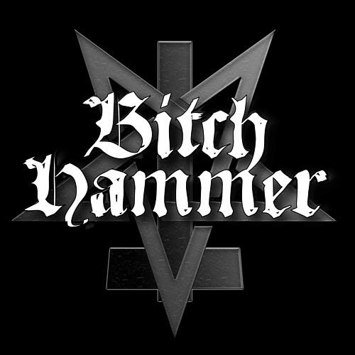 BitchHammer's avatar