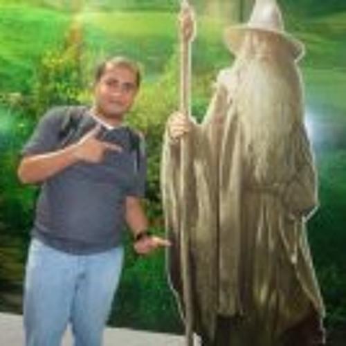 Danilo Ferreira Silva's avatar