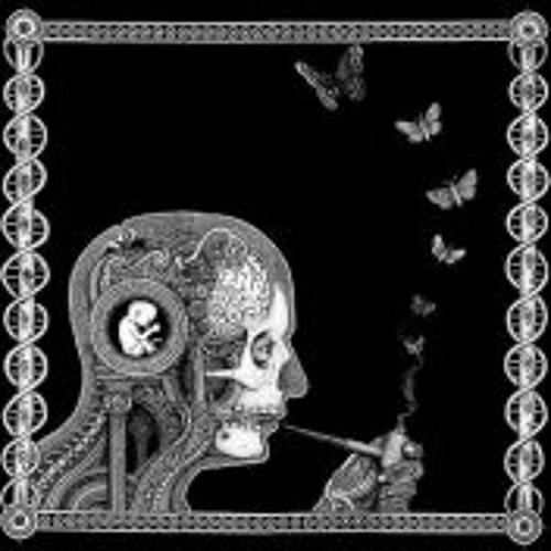 Velkynovo's avatar