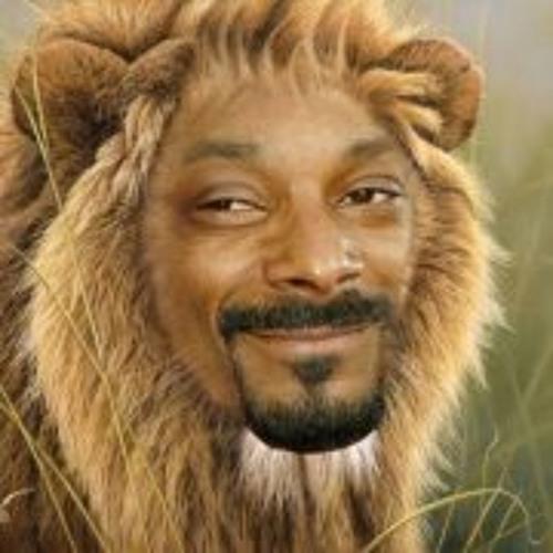 Maikel Dikbuik's avatar