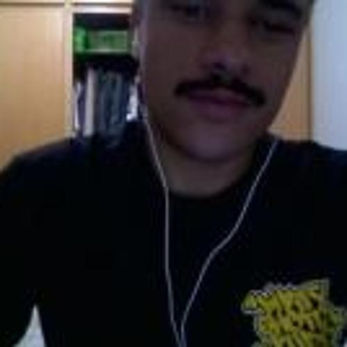 Luiz Carlos Fischer's avatar