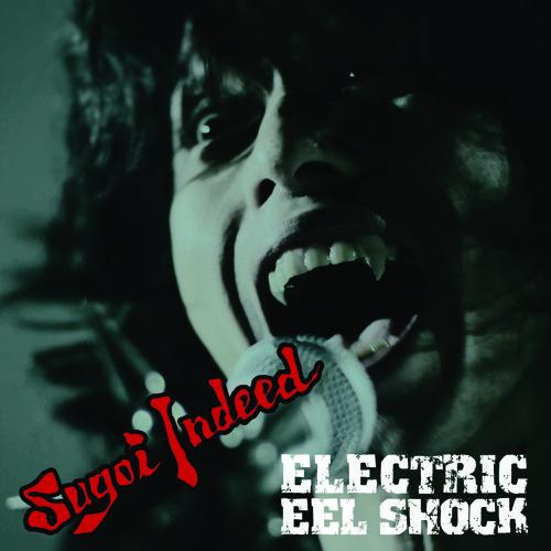 ELECTRIC EEL SHOCK's avatar