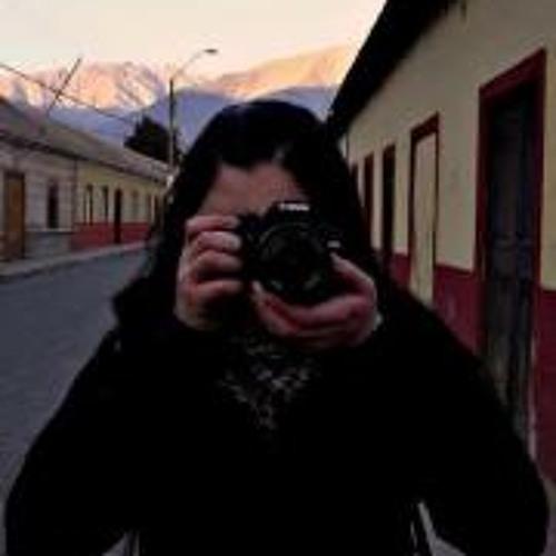Fernanda Erices's avatar