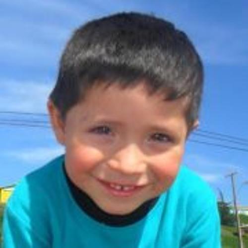 Andres Berrios Yañez's avatar