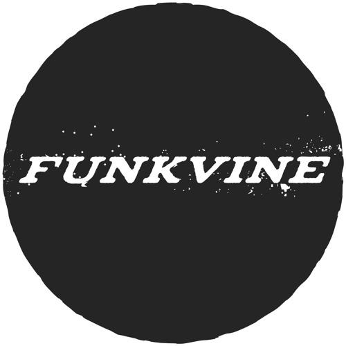 Funkvine Recordings's avatar
