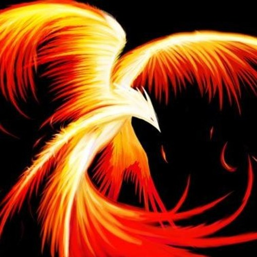 Phoenix & Phantom | Void