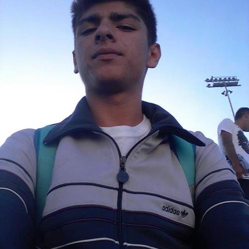 danielayarce's avatar