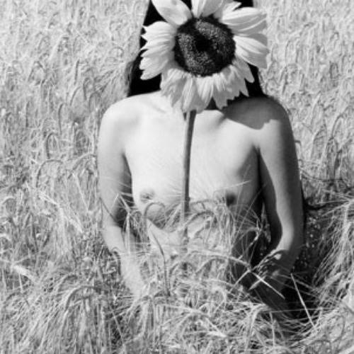 littleflowers's avatar