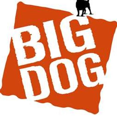 BIG DOG RECORD'S's avatar