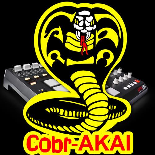 COBR_AKAI's avatar