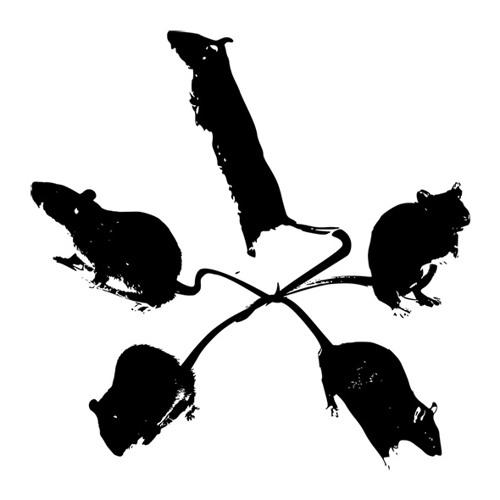 Roy de Rats's avatar