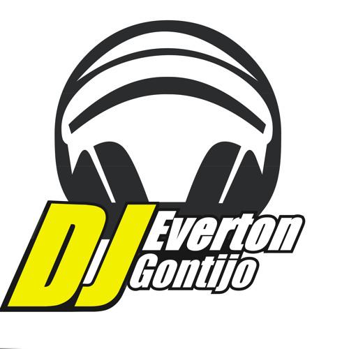 Everton Gontijo's avatar
