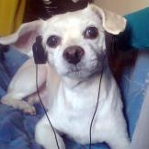 Gaby Carbajal 1's avatar