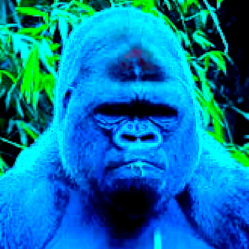 mynameiscarlo's avatar