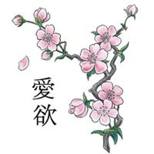 Sakura Vatefairefoutre's avatar