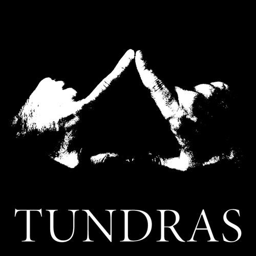 OfficialTundras's avatar