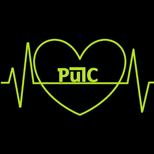PulC's avatar