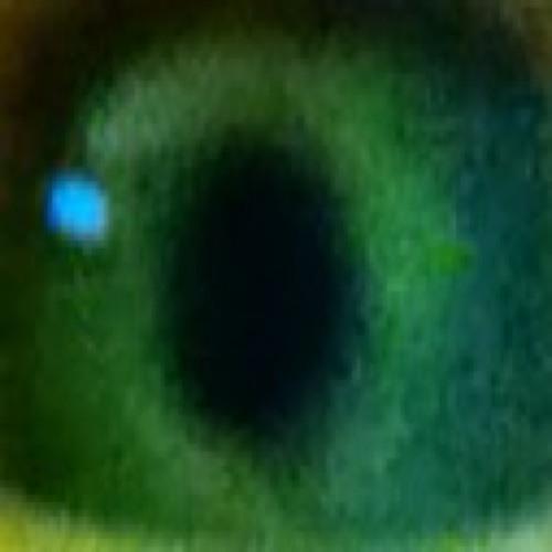 jerooen's avatar