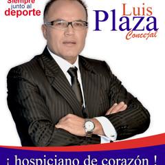 Luis Plaza Concejal