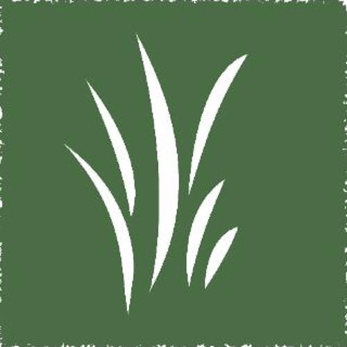 Grassroots Rockford's avatar
