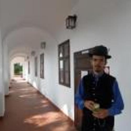 Levente Molnár 2's avatar