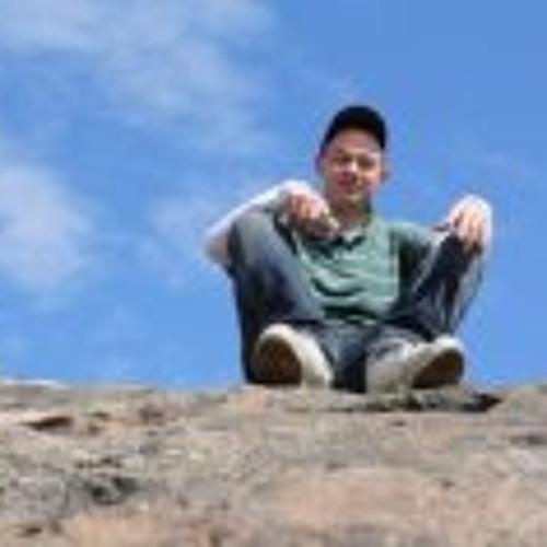 Dennis Sichler's avatar