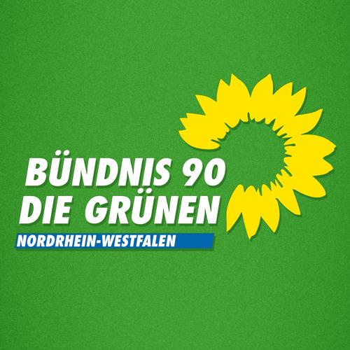 gruenenrw's avatar
