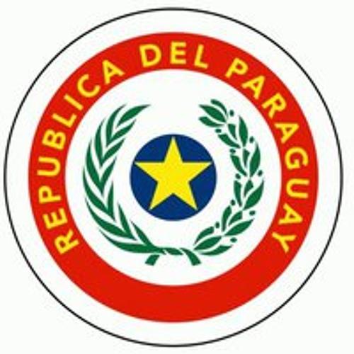 Consulado del Paraguay's avatar